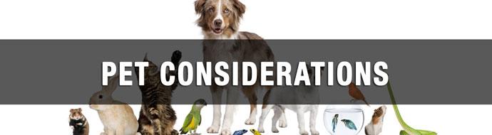pet-considerations